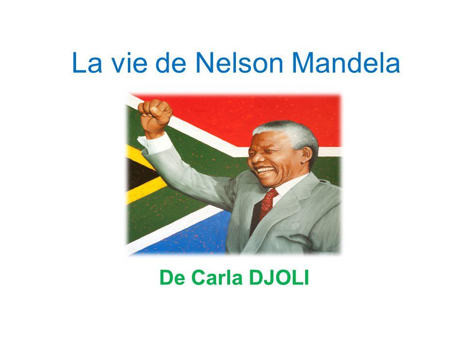 La vie de Nelson Mandela De Carla DJOLI
