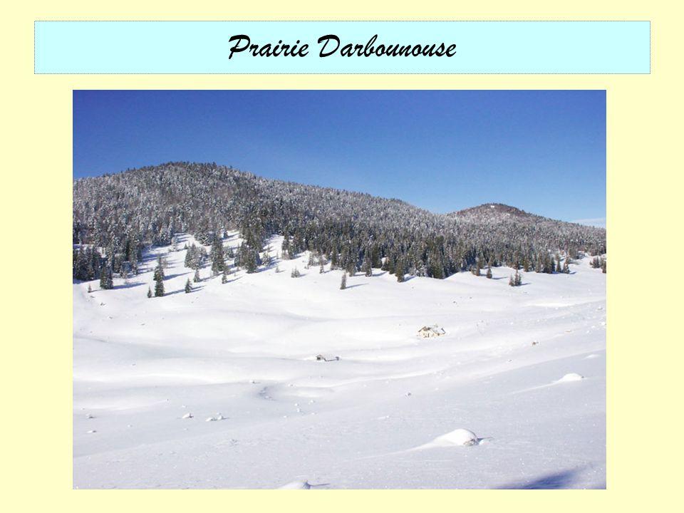 Vallée de la Vernaison