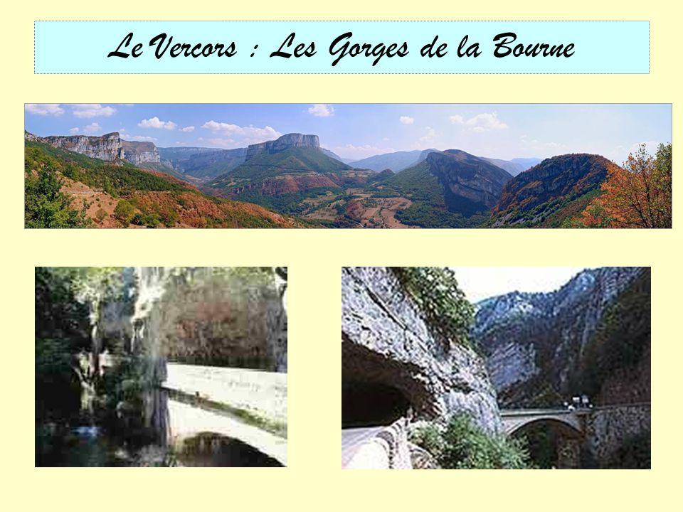 Chartreuse des Ecouges (Les Coulmes)