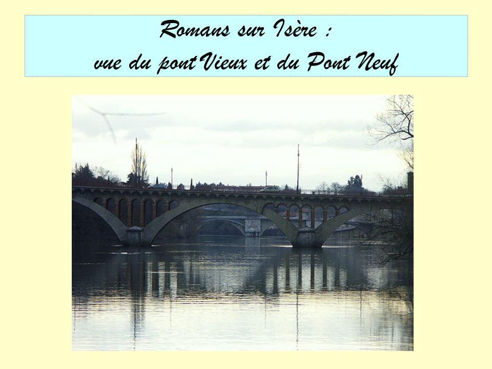 Romans sur Isère : Saint Barnard et le Pont Vieux