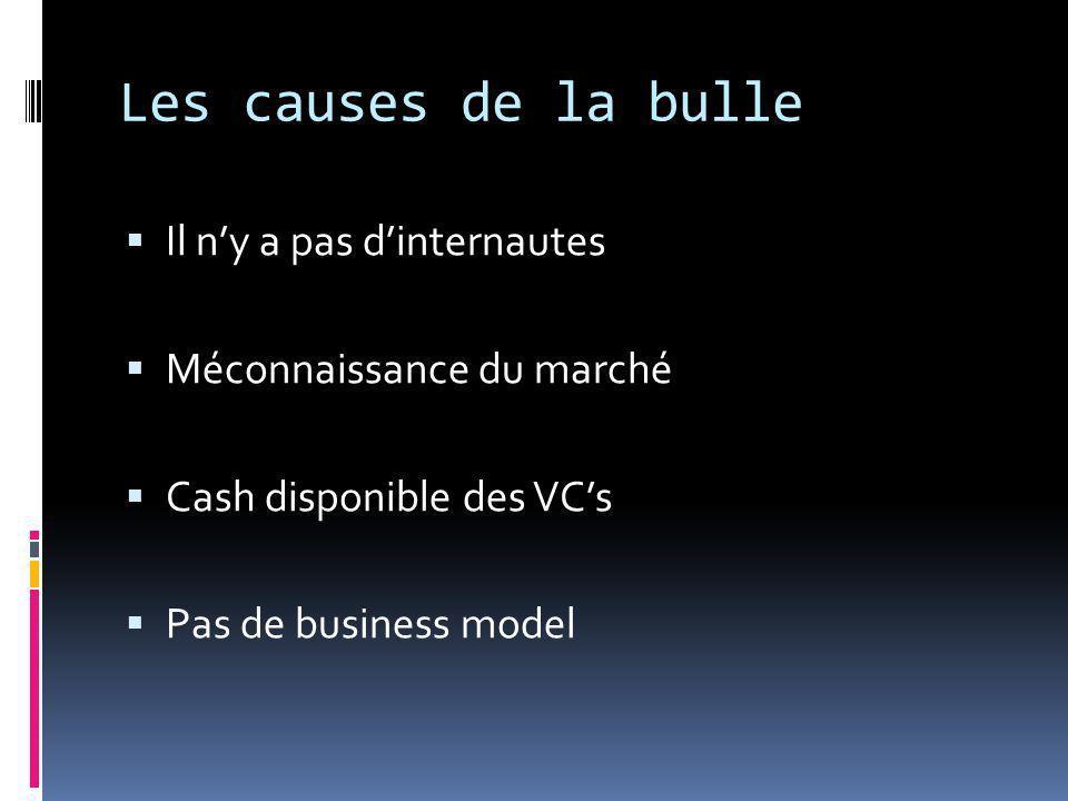 Les causes de la bulle  Il n'y a pas d'internautes  Méconnaissance du marché  Cash disponible des VC's  Pas de business model