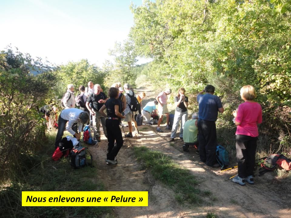 Photo du groupe avant d'entamer la descente vers Courgas