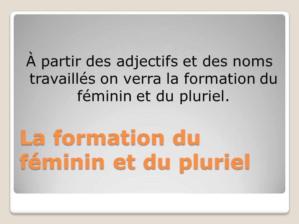 La formation du féminin et du pluriel À partir des adjectifs et des noms travaillés on verra la formation du féminin et du pluriel.