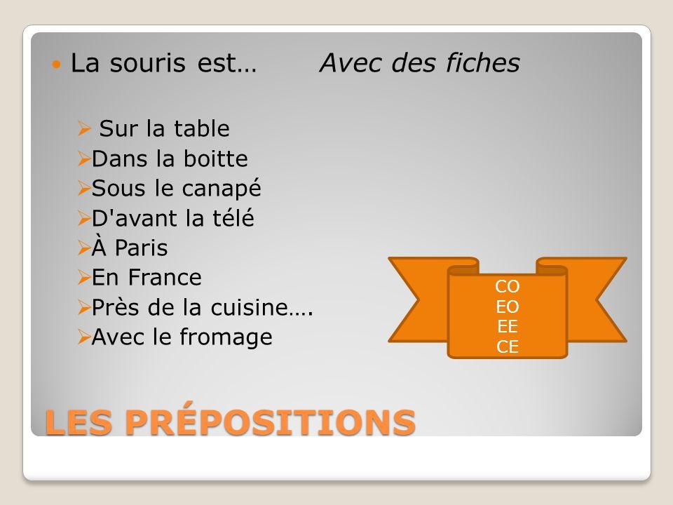 LES PRÉPOSITIONS La souris est…Avec des fiches  Sur la table  Dans la boitte  Sous le canapé  D avant la télé  À Paris  En France  Près de la cuisine….