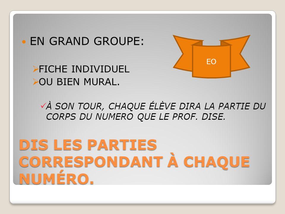 DIS LES PARTIES CORRESPONDANT À CHAQUE NUMÉRO.EN GRAND GROUPE:  FICHE INDIVIDUEL  OU BIEN MURAL.