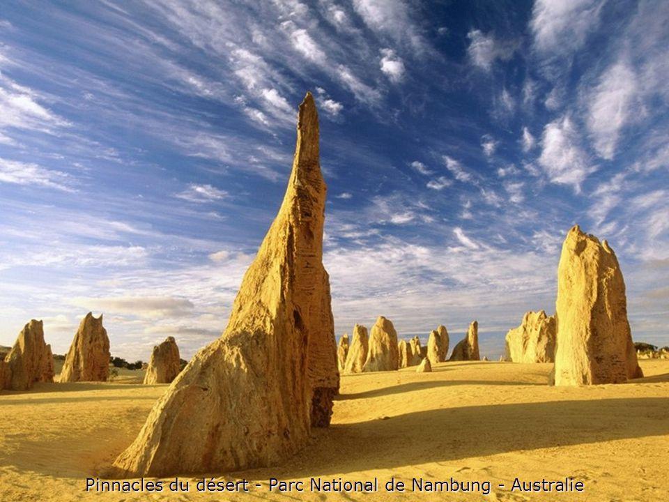 Pinnacles du désert - Parc National de Nambung - Australie