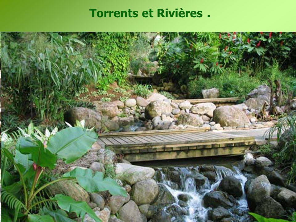 Torrents et Rivières.