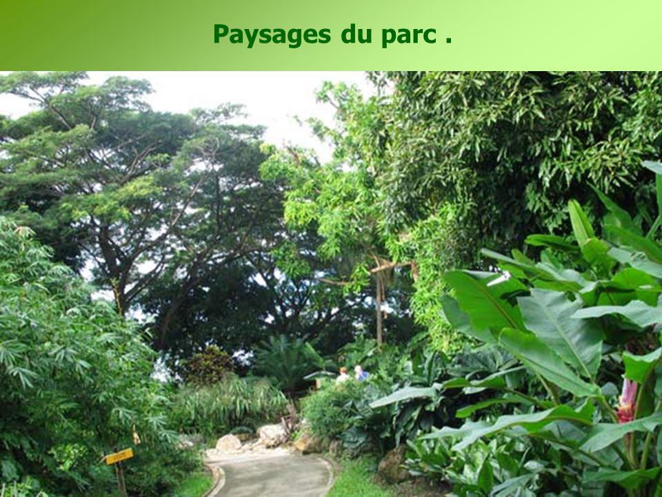 Ce jardin botanique est implanté sur l ' ancienne propriété de Coluche notre célèbre humoriste disparu en 1986.