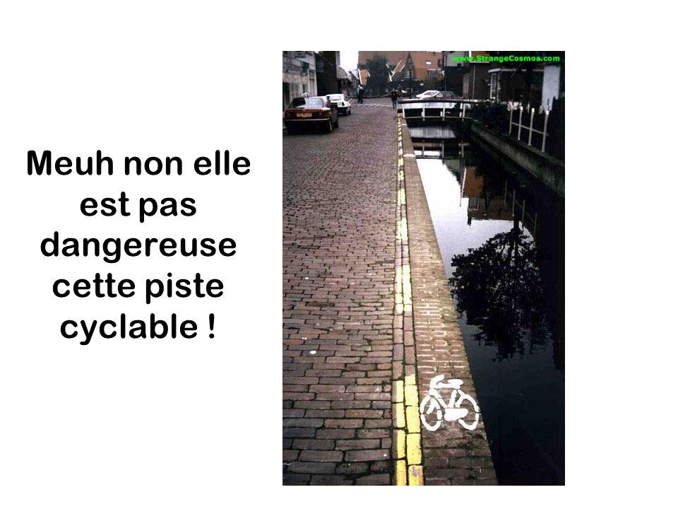 Meuh non elle est pas dangereuse cette piste cyclable !