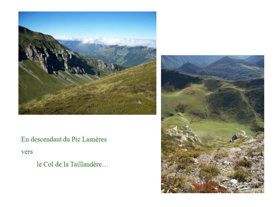 En descendant du Pic Lasnères vers le Col de la Taillandère…