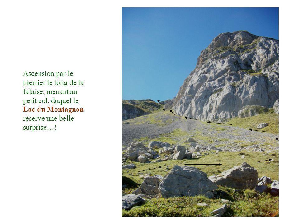 Ascension par le pierrier le long de la falaise, menant au petit col, duquel le Lac du Montagnon réserve une belle surprise…!