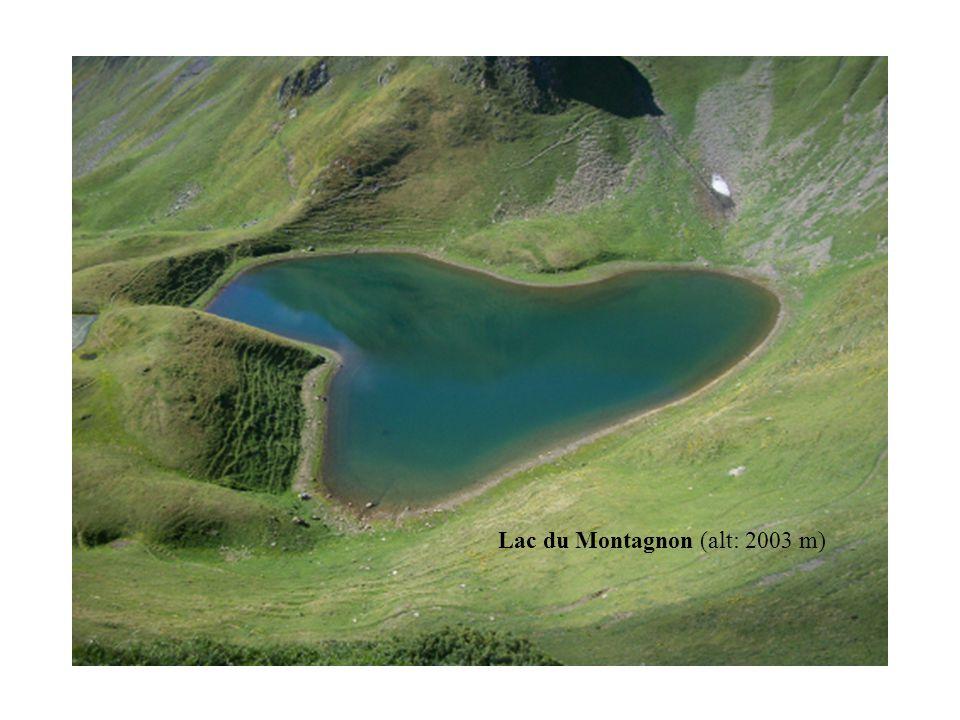 Lac du Montagnon (alt: 2003 m)