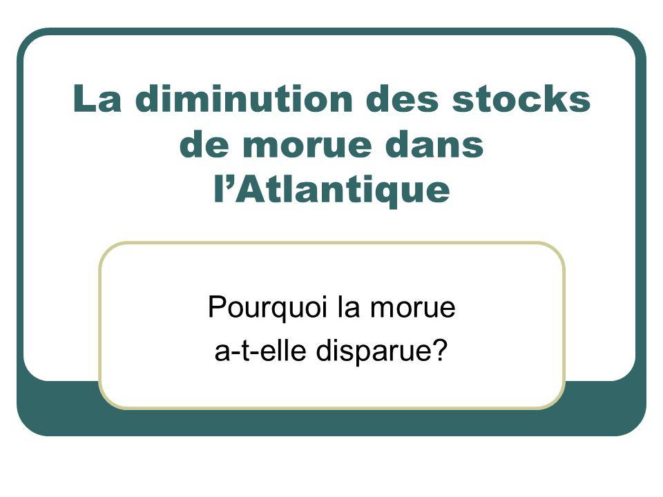 La diminution des stocks de morue dans l'Atlantique Pourquoi la morue a-t-elle disparue?