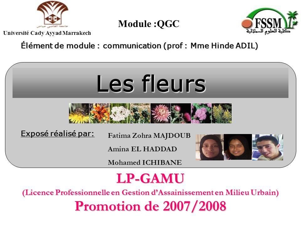LP-GAMU (Licence Professionnelle en Gestion d'Assainissement en Milieu Urbain) Promotion de 2007/2008 Les fleurs Exposé réalisé par: Fatima Zohra MAJDOUB Amina EL HADDAD Mohamed ICHIBANE Élément de module : communication (prof : Mme Hinde ADIL) Module :QGC Université Cady Ayyad Marrakech