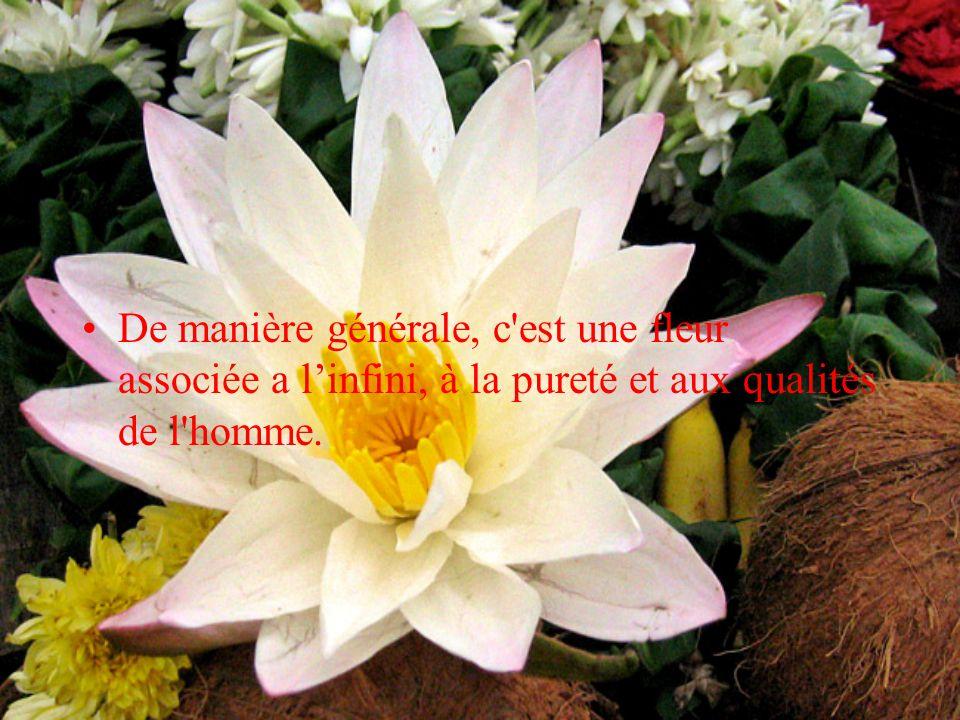 De manière générale, c'est une fleur associée a l'infini, à la pureté et aux qualités de l'homme.