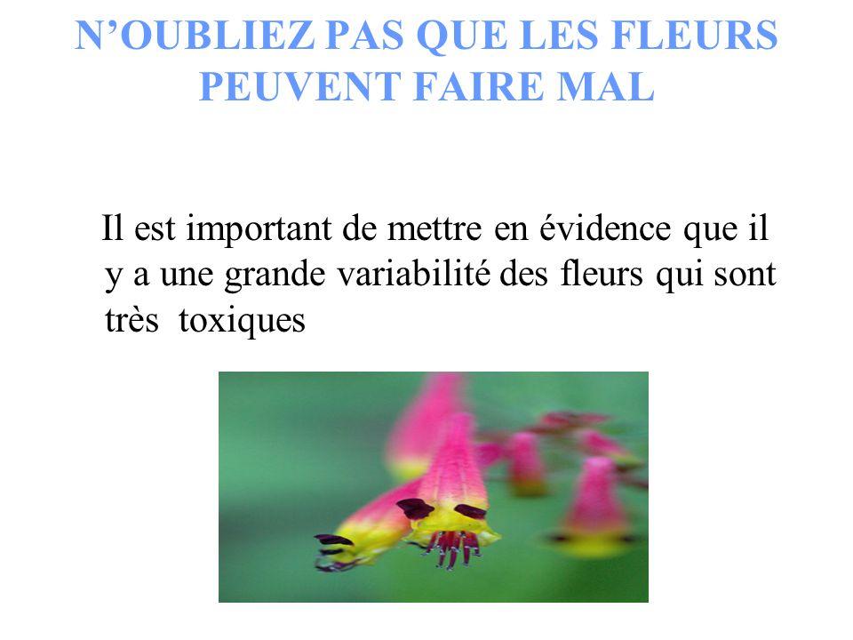 N'OUBLIEZ PAS QUE LES FLEURS PEUVENT FAIRE MAL Il est important de mettre en évidence que il y a une grande variabilité des fleurs qui sont très toxiq
