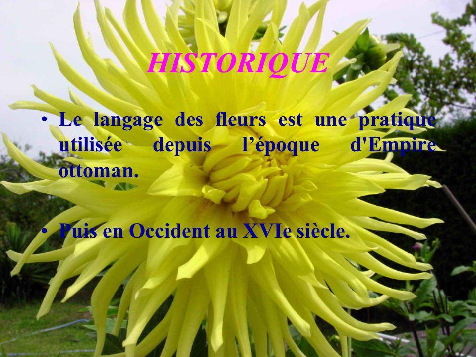 HISTORIQUE Le langage des fleurs est une pratique utilisée depuis l'époque d'Empire ottoman. Puis en Occident au XVIe siècle.