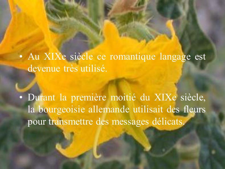 Au XIXe siècle ce romantique langage est devenue très utilisé.