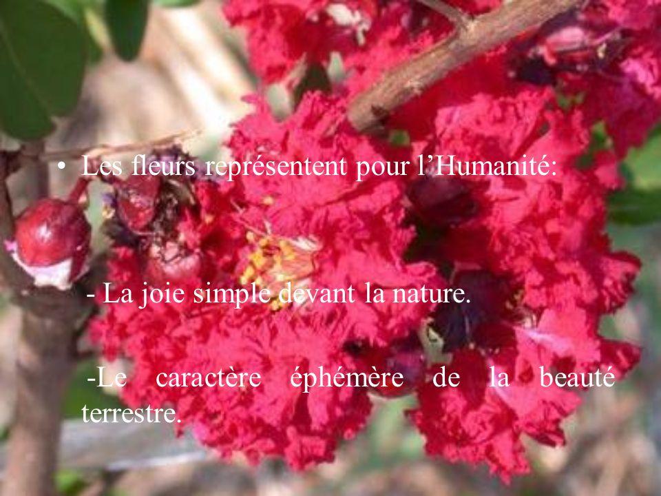Les fleurs représentent pour l'Humanité: - La joie simple devant la nature. -Le caractère éphémère de la beauté terrestre.