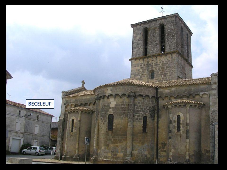 Quasimodo, petit baudet du Poitou