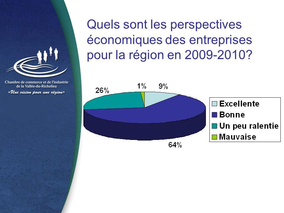 Quels sont les perspectives économiques des entreprises pour la région en 2009-2010