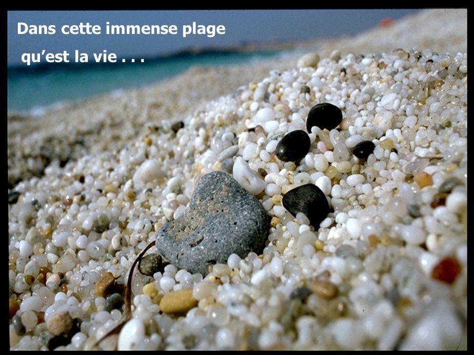 Dans cette immense plage qu'est la vie...