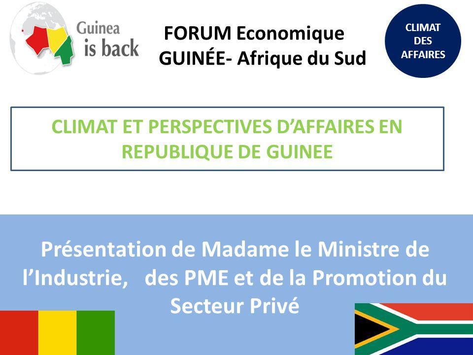 Présentation de Madame le Ministre de l'Industrie, des PME et de la Promotion du Secteur Privé CLIMAT DES AFFAIRES FORUM Economique GUINÉE- Afrique du Sud CLIMAT ET PERSPECTIVES D'AFFAIRES EN REPUBLIQUE DE GUINEE