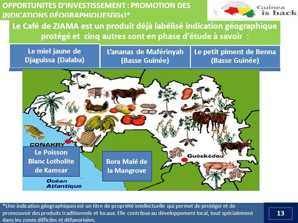 *Une indication géographiques est un titre de propriété intellectuelle qui permet de protéger et de promouvoir des produits traditionnels et locaux.