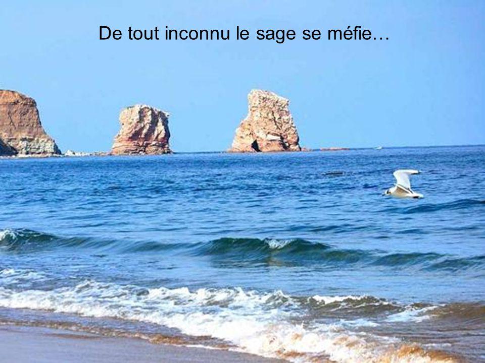 Martinique – Petite Anse Diamant