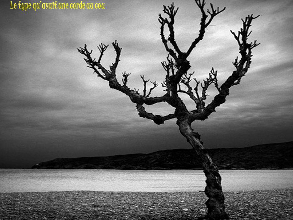 L Y N C H A G E Poème de Jean-Baptiste BESNARD Musique: « Strange Fruit » par Billie HOLIDAY Montage: Michel C