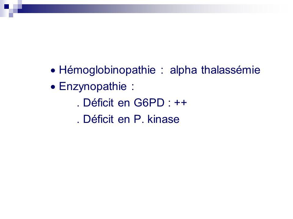  Hémoglobinopathie : alpha thalassémie  Enzynopathie :.