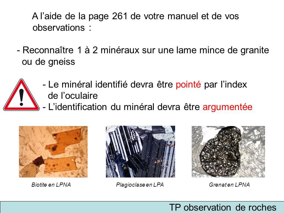 TP observation de roches A l'aide de la page 261 de votre manuel et de vos observations : - Reconnaître 1 à 2 minéraux sur une lame mince de granite o
