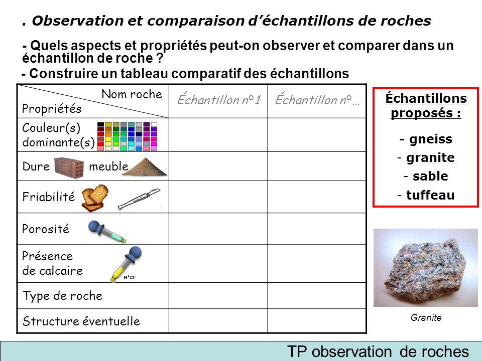 . Observation et comparaison d'échantillons de roches - Quels aspects et propriétés peut-on observer et comparer dans un échantillon de roche ? - Cons