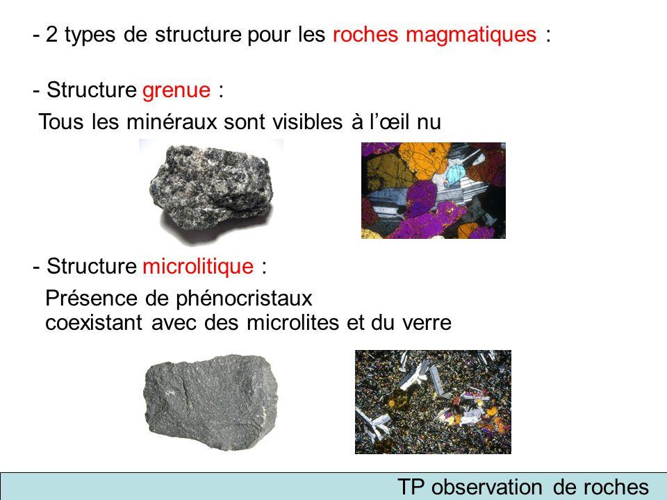 - 2 types de structure pour les roches magmatiques : - Structure grenue : Tous les minéraux sont visibles à l'œil nu - Structure microlitique : Présen