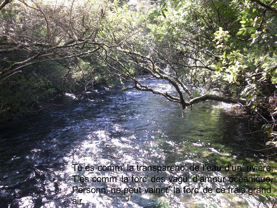 Tu es comm' la transparenc' de l'eau d'un' rivière, T'es comm' la forc' des vagu' d'amour océanique, Personn' ne peut vaincr' la forc' de ce frais grand air, Il vient de loin et a vu des chos' magnifiques.