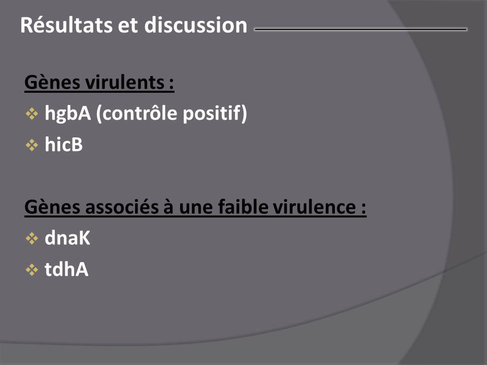 Résultats et discussion Gènes virulents :  hgbA (contrôle positif)  hicB Gènes associés à une faible virulence :  dnaK  tdhA