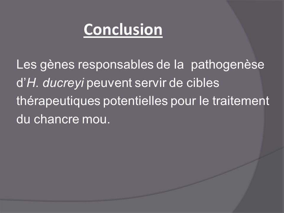 Conclusion Les gènes responsables de la pathogenèse d'H. ducreyi peuvent servir de cibles thérapeutiques potentielles pour le traitement du chancre mo