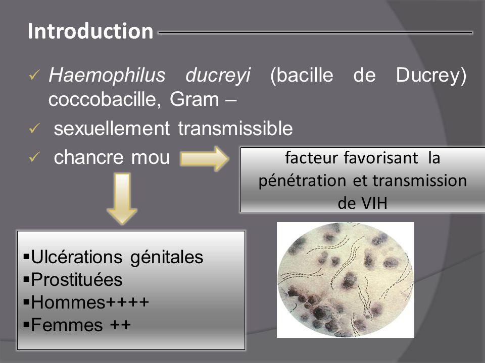 Introduction Haemophilus ducreyi (bacille de Ducrey) coccobacille, Gram – sexuellement transmissible chancre mou facteur favorisant la pénétration et
