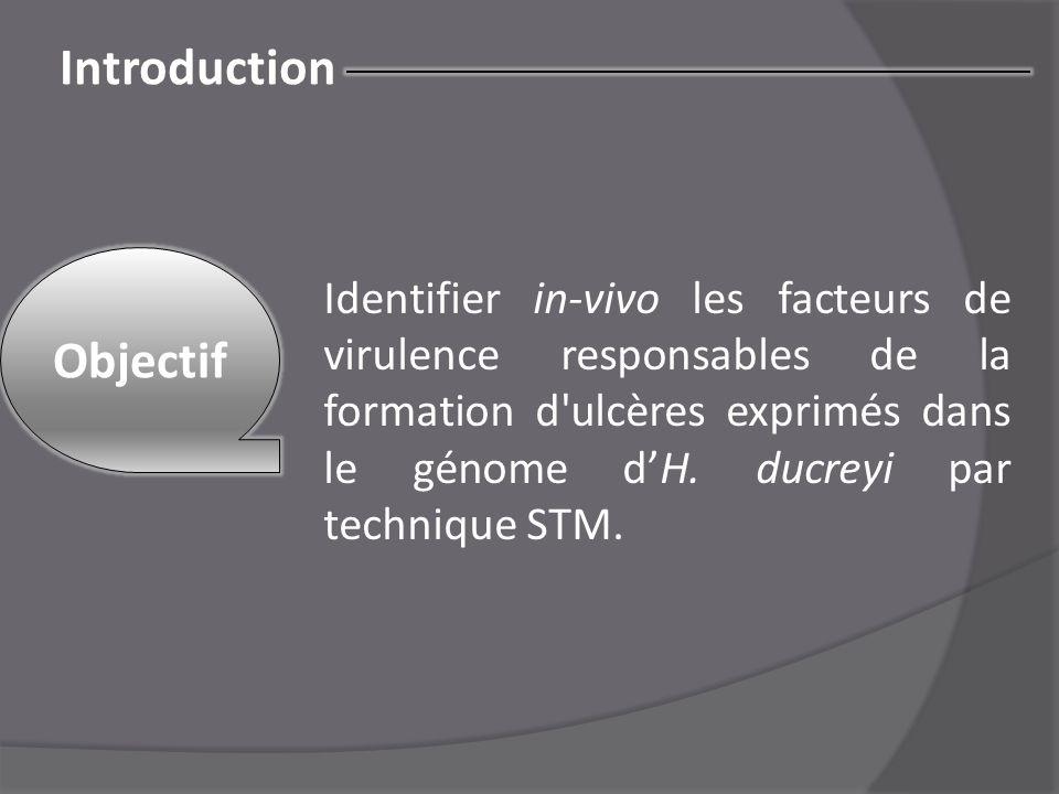 Introduction Objectif Identifier in-vivo les facteurs de virulence responsables de la formation d'ulcères exprimés dans le génome d'H. ducreyi par tec