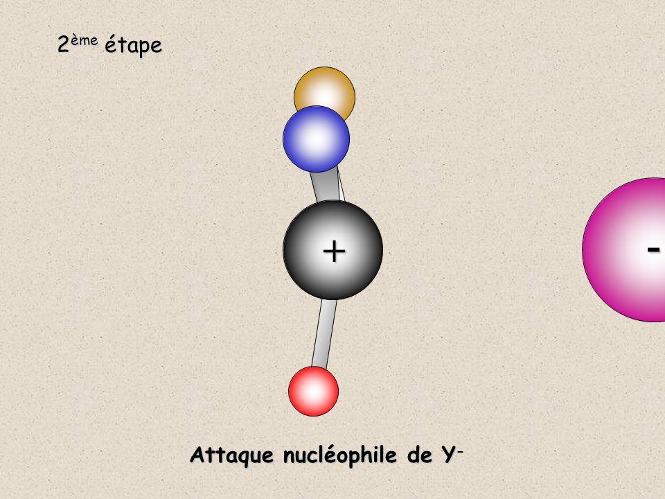 + 2 ème étape - Attaque nucléophile de Y -