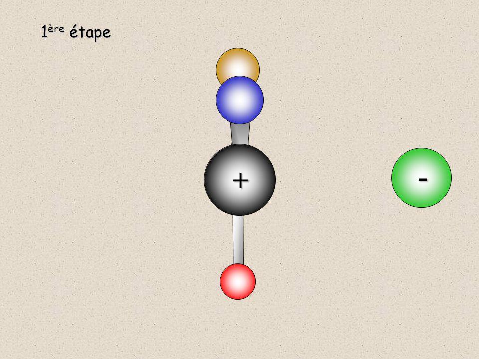 2 ème étape C  Y  Addition nucléophile de Y -