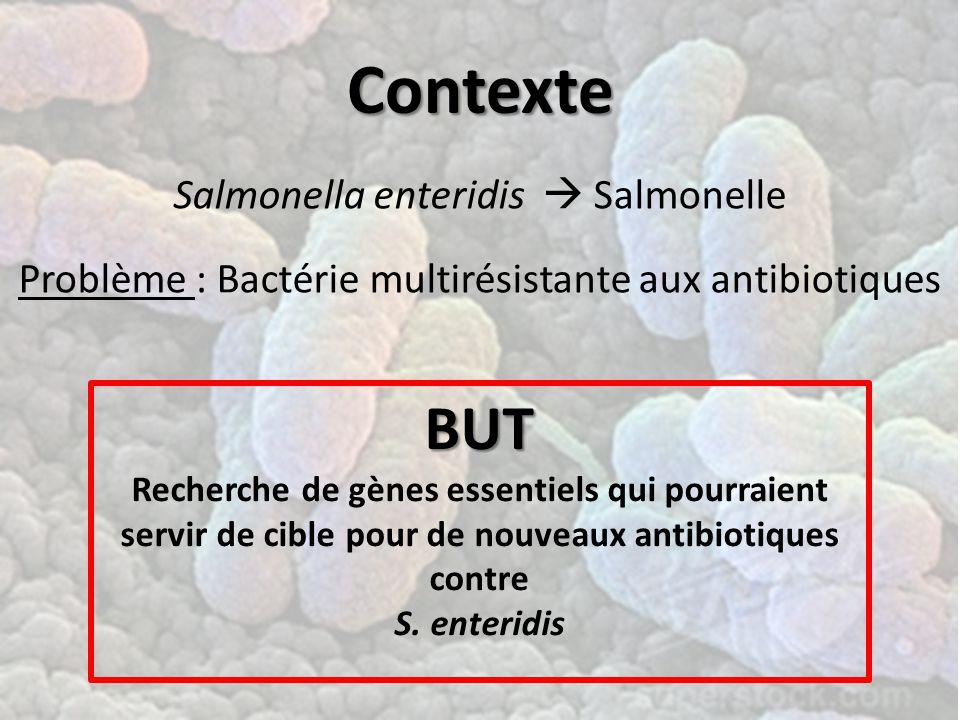 Contexte Salmonella enteridis  Salmonelle Problème : Bactérie multirésistante aux antibiotiques BUT Recherche de gènes essentiels qui pourraient servir de cible pour de nouveaux antibiotiques contre S.