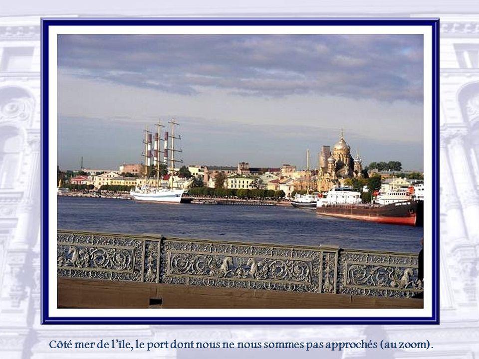 A proximité de l'île aux Lièvres, lieu de naissance de Saint-Pétersbourg, se trouve l'île Vassilievski, la plus grande ile du delta de la Neva. La poi