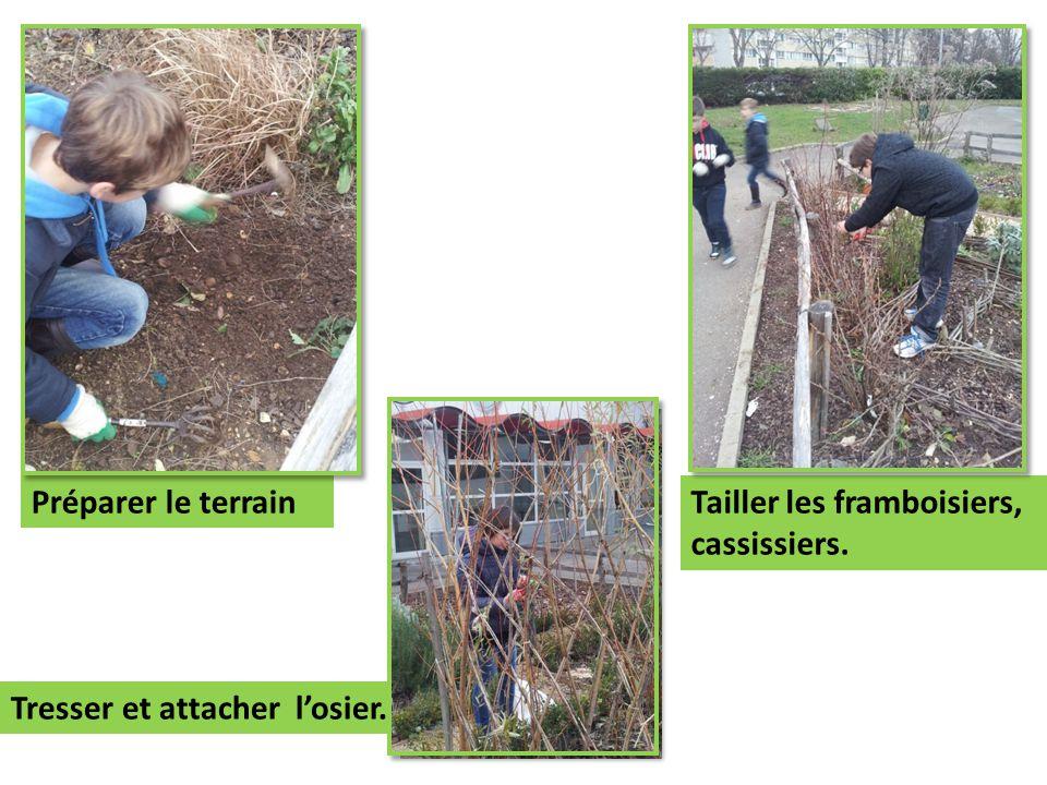 Nous commençons les travaux dans notre nouvelle parcelle. Première étape : planter le gazon.