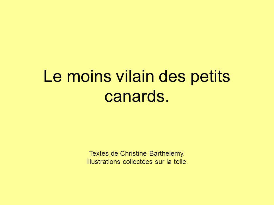 Le moins vilain des petits canards. Textes de Christine Barthelemy. Illustrations collectées sur la toile.