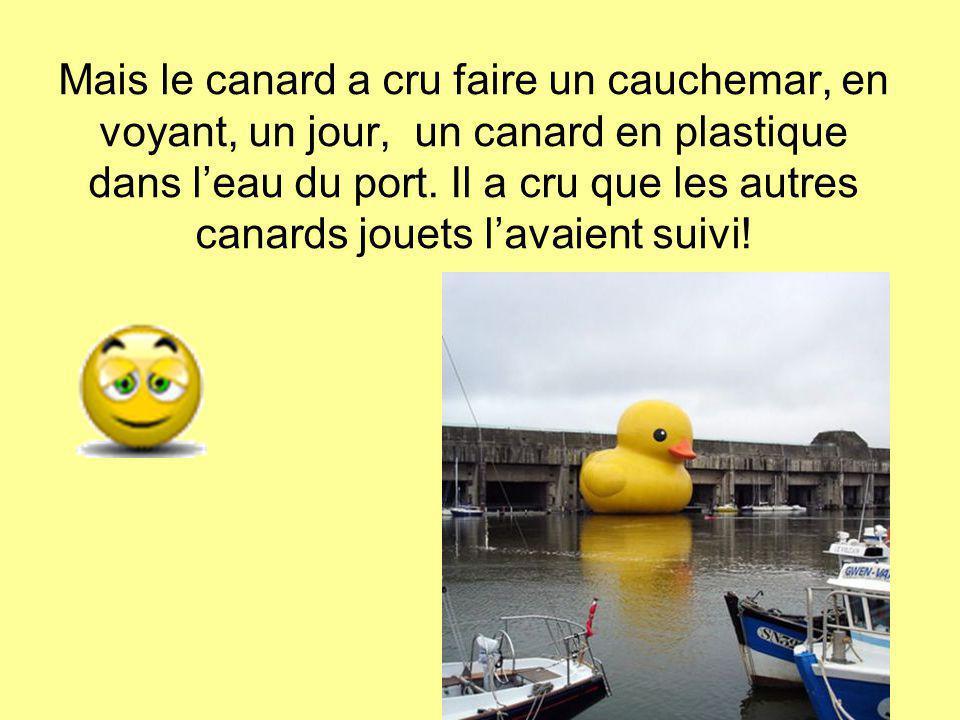 Mais le canard a cru faire un cauchemar, en voyant, un jour, un canard en plastique dans l'eau du port. Il a cru que les autres canards jouets l'avaie