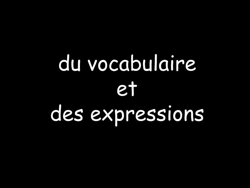 du vocabulaire et des expressions