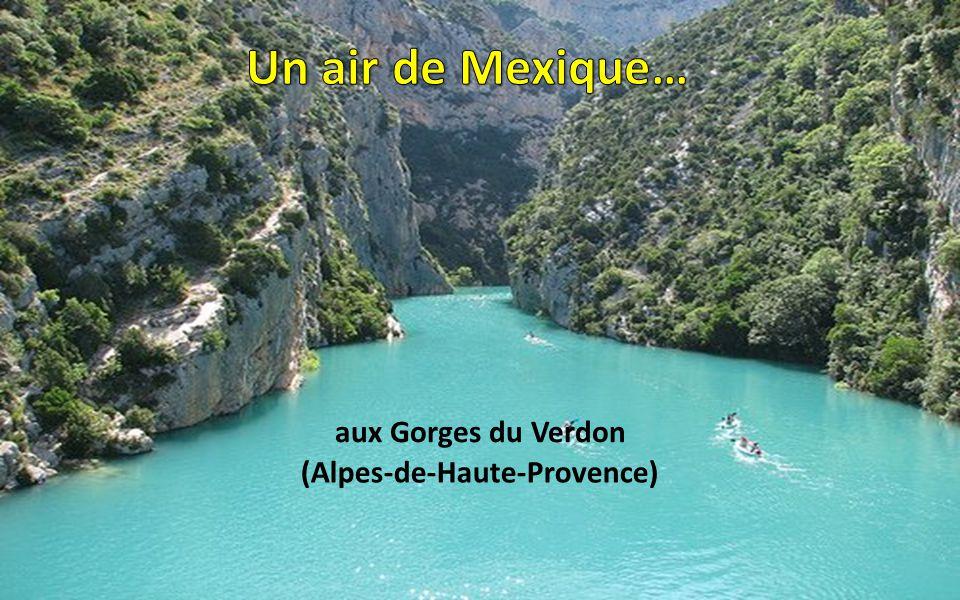 aux Iles Lavezzi (Corse)