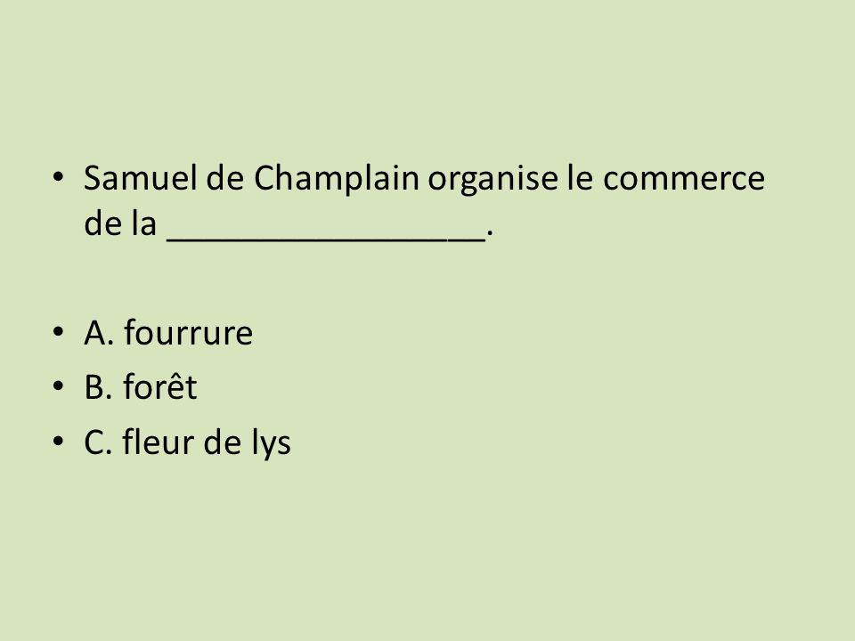 Samuel de Champlain organise le commerce de la _________________.