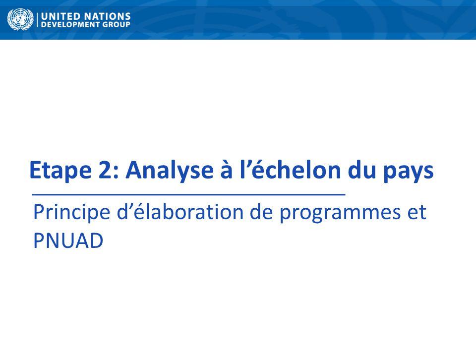 Etape 2: Analyse à l'échelon du pays Principe d'élaboration de programmes et PNUAD